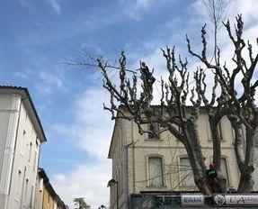 Entreprise Rieu - Carpentras - TRAVAUX D'ÉLAGAGE